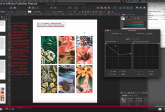 Open In Affinity Publisher