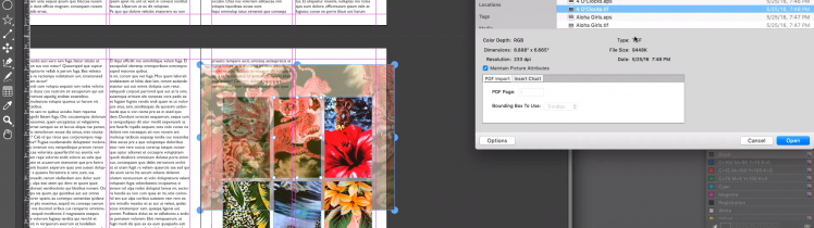 Openen in QuarkXPress